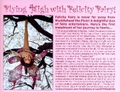 Felicity Fairy feature in FAE Magazine